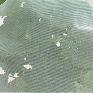 Enviromesh to protect against cabbage white butterflies